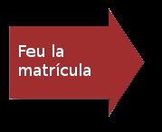 flecha-matricula GEC-angles.png